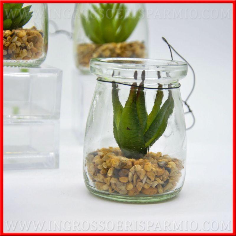 Piante grasse con vaso vetro lanterna e sassi natural for Tutte le piante grasse