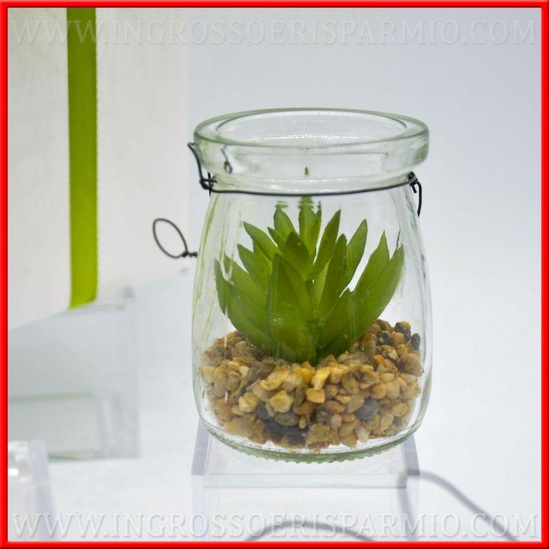 Piante Grasse Vetro : Piante grasse con vaso vetro lanterna e sassi natural